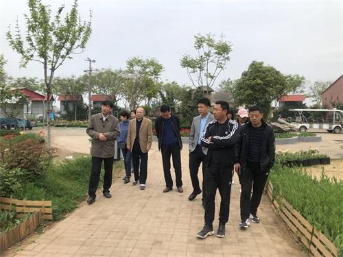 """杜集区政协开展""""关于高岳现代农业示范园发展""""情况调研"""